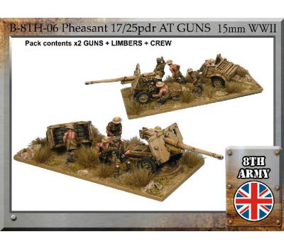 B-8TH-06 - 8th Army British 17/25pdr Pheasant anti-tank gun