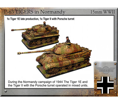 P-63 Tigers in Normandy