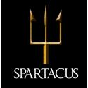 Later Republican Roman (Spartacus Slave Revolt)