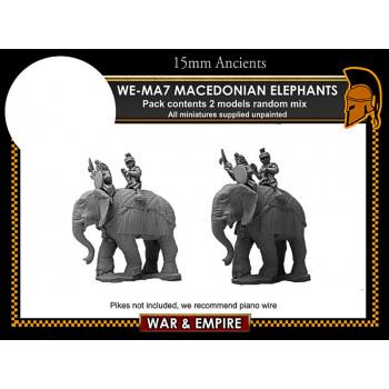 WE-MA07 Macedonian Elephants