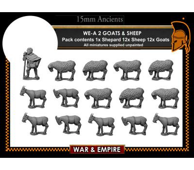 WE-A-02 Sheep & Goats