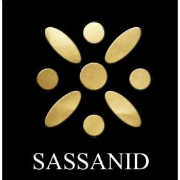 WE-A85 Early Sassanid